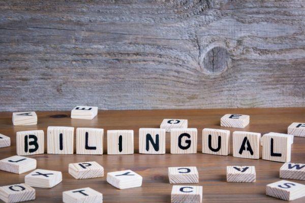 دوزبانگی و ارتباط آن با ترجمه حرفه ای