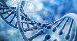 ترجمه تخصصی زیست شناسی - ترجمه مقاله و متن