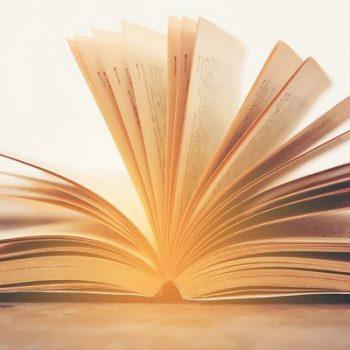 بیشترین کتب ترجمه شده مربوط به چه زمینه و حوزه ای است؟
